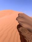 zanzibar dune